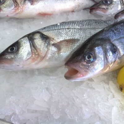 Super Healthy grilled Bass